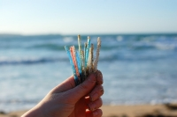 Stemming plastic pollution: Retailers, manufacturers and public back ban on plastic cotton bud sticks in Scotland